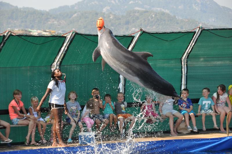 FULL DAY TO MARMARIS AND WATCH  THE DOLPHINS