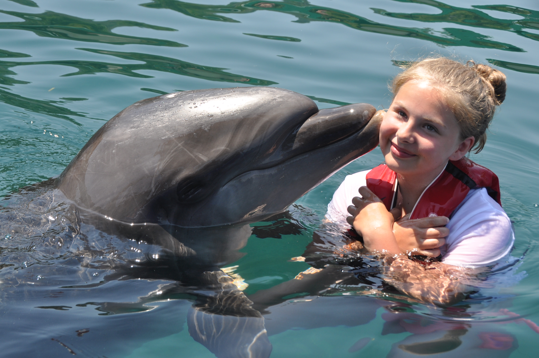 FULL DAY TO MARMARIS AND SWIM WITH THE DOLPHINS